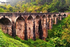 The famous Demadora Nine Arch Bridge in Ella Sri Lanka is a spectacular feat of engineers and an amazing spot to watch