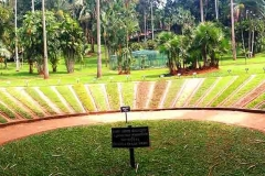 Royal Botanical Garden Grass Collection Great place to visit for any garden lovers. Wonderful range of plants and trees.