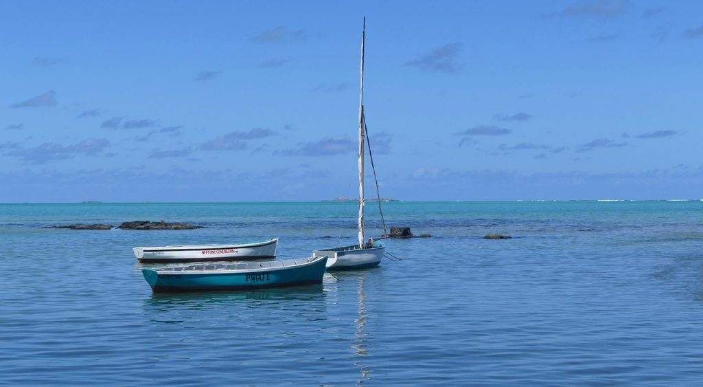 Mauritius Karuya BhramanTea