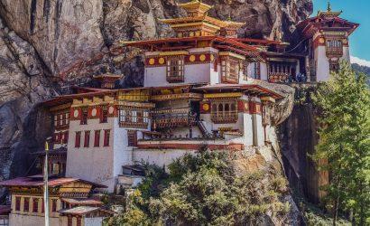 Bhutan Karuya BhramanTea